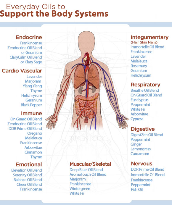 Essential Oils for Body System
