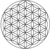 The flower of life is a geometrical shape composed of multiple evenly-spaced, overlapping circles arranged in a flower like pattern with six fold symmetry ...