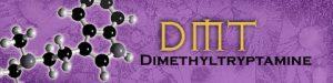 Dimethyl Tryptamine