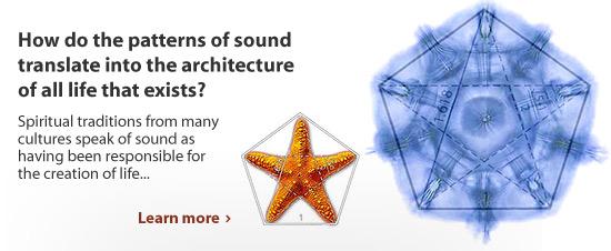 Cymatics - the Patterns of Sound