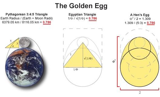 Golden Egg Equation
