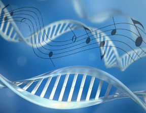 Music DNA