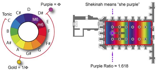 Shekinah Purple Ratio